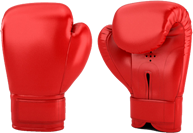 boxing-gloves-500x500